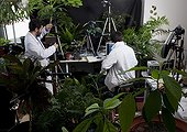 Researchers and filming equipment plant development ; Researchers: Stéphane Douady and Etienne Couturier