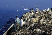 Maintenance of solar panels on the island of Rouzic France