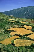 Agroforestry landscape and Montsec Rúbies Catalonia Spain