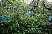 Bins used to collect leaves in forest France ; Platform study of pubescent oak<br>CNRS Observatoire de Haute-Provence