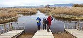 Foot bridge in Reeds bed Las Tablas de Daimiel NP Spain