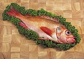 Rockfish and parsley on a stall
