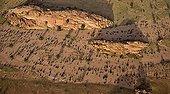 Dry riverbed Namibia Brandberg Massif Damaraland
