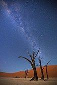 Milky Way over Dead Vlei Soussvlei Namibia