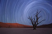 Star trails Dead Vlei Sossusvlei Namibia