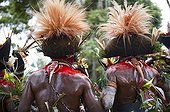 Huli Wigmen from the Tari Valley at a Sing-sing PNF ; Wearing bird of paradise feathers and plumes particularly Raggiana Bird of Paradise plumes (orange plumes)