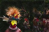 Huli Wigmen from the Tari Valley at a Sing-sing PNF ; Wearing bird of paradise feathers and plumes particularly Raggiana Bird of Paradise plumes (orange plumes) and breast shield of Superb Bird of Paradise<br>