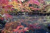 Tenju-an temple pound in autumn  Japon
