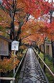Tenju-an temple garden in autumn  Japon