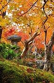 Lantern at Enko-ji  temple garden in autumn  Japon