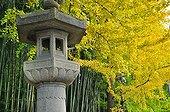 Lantern at Koto-ini temple garden in autumn  Japon