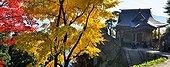 Yamadera temple garden in autumn  Japon
