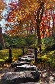 Rock path in a japanese garden in autumn  Japon