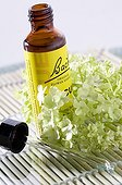 Bach flowers and essential oil close-up