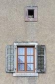 Kestrel nest of the window in a farm France