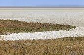 Etosha Pan Namibia