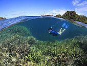 """Woman snorkels over staghorn corals Indonesia ; In background the boat """"Seven Seas"""" at anchor"""