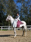 Amazon rider and horse