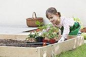 Fillette posant des plants de Tomate et de Fraisier France ; Age : 7 ans