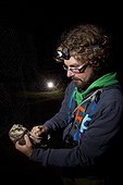 Banding Boreal Owl Bretolet Pass Swiss Alps  ; Each year between 10 and 20 000 birds of 100 species are catch and ring the Col de Bretolet<br>Biologist : Marco Thoma<br>