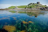 Ile aux Moines, Sept-Îles archipelago, Brittany France