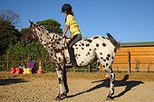 Young woman doing an exercise with his horse France ; Equestrian center specializing in Equihomologie