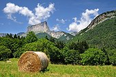 Mont Aiguille Cliff eastern Vercors France