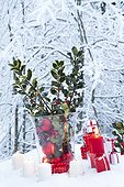 Branch of holly and gifts in a garden under snow