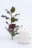 Branch of holly and candle in the snow