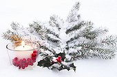 Holly and candle in the snow