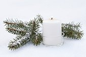 Candle and spruce branche in the snow