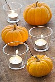 Pumpkins 'Jack be little' and candles on a table