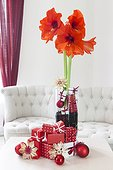 Amaryllis in bloom and Christmas decoration in a living room