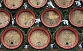 Germany ; Beer barrels of Ettal Abbey, a Benedictine monastery. Ettal, Bavaria, Germany, Europe