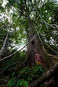 Character in front of a tree in the forest Amazonian Bolivia