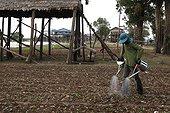 Arrosage des potagers à Kompong Chnnang Cambodge