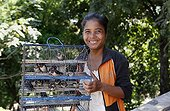 Vendeuse d'oiseaux au Wat Phnom Cambodge ; Pagode bouddhiste de Wat Phnom Daun Penh