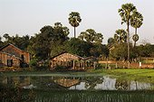 Habitat traditionnel Khmer Campagne de Pursat Cambodge