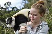 Black and white ruffed Lemur and tourist Andasibe Madagascar ; Lemur attracted by the food offered by a tourist