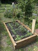 Culture tray in an organic garden France