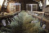 Sheepfold in Aveyron  France
