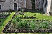 Squarefoot aromatic plants garden