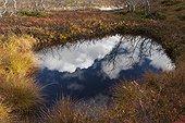 Reflection of clouds in a lake bog Sånfjället Sweden