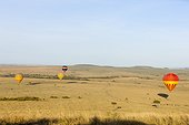 Balloons flight over zebras and wildebeests herds Masai Mara