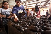 Smoked Bats on a market stall Tomohon Sulawesi