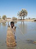 Vegetable Ivory Palm - Namibia ; Namibia - Owambo woman fishing in a shallow pool (oshana) which characterise the region. In the background Makalani palm trees (Hyphaene petersiana). Omusati region, northern Namibia.