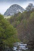 Mont Gerbier de Jonc and Loire river France ; Elevation : 1551 m