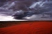 Kings Canyon NP Watarrka Northern Territory Australia