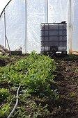 Organic truck farming in Aveyron  France