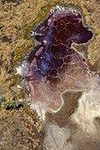 Rivière Suguta Vallée du Rift Kenya ; La rivière Suguta provient du mont Silali qui est un volcan éteint.